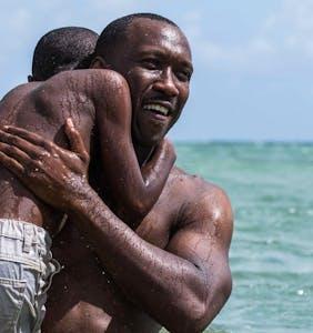 Gay drama 'Moonlight' scores 8 Oscar nominations