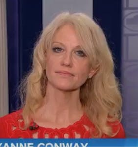 Kellyanne's latest humiliating interview will almost make you feel bad for her. Almost.