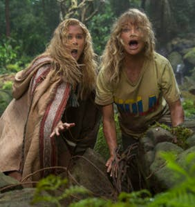 """10 cool things about the Amy Schumer-Goldie Hawn comedy """"Snatched"""""""