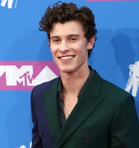 Shawn Mendes addresses gay rumors head-on