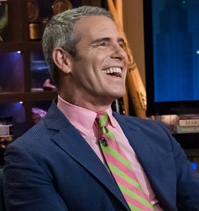Andy Cohen suggests new tactic in the Brunei Boycott: Gay adult films