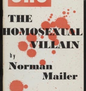 That time literary lion Norman Mailer admitted his homophobia