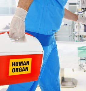 Man told his dead husband's healthy organs are too gay for donation